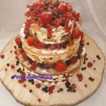 Nahý dort 3