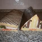 krokodýl a střechy