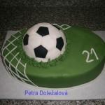 fotbalový