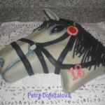 kůň 2