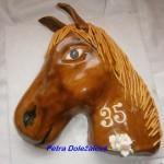 Kůň s 35
